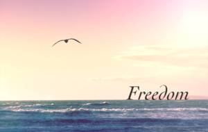 Freedom values mental health