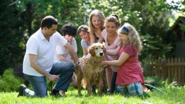 Essential Steps to a Happier Family Life